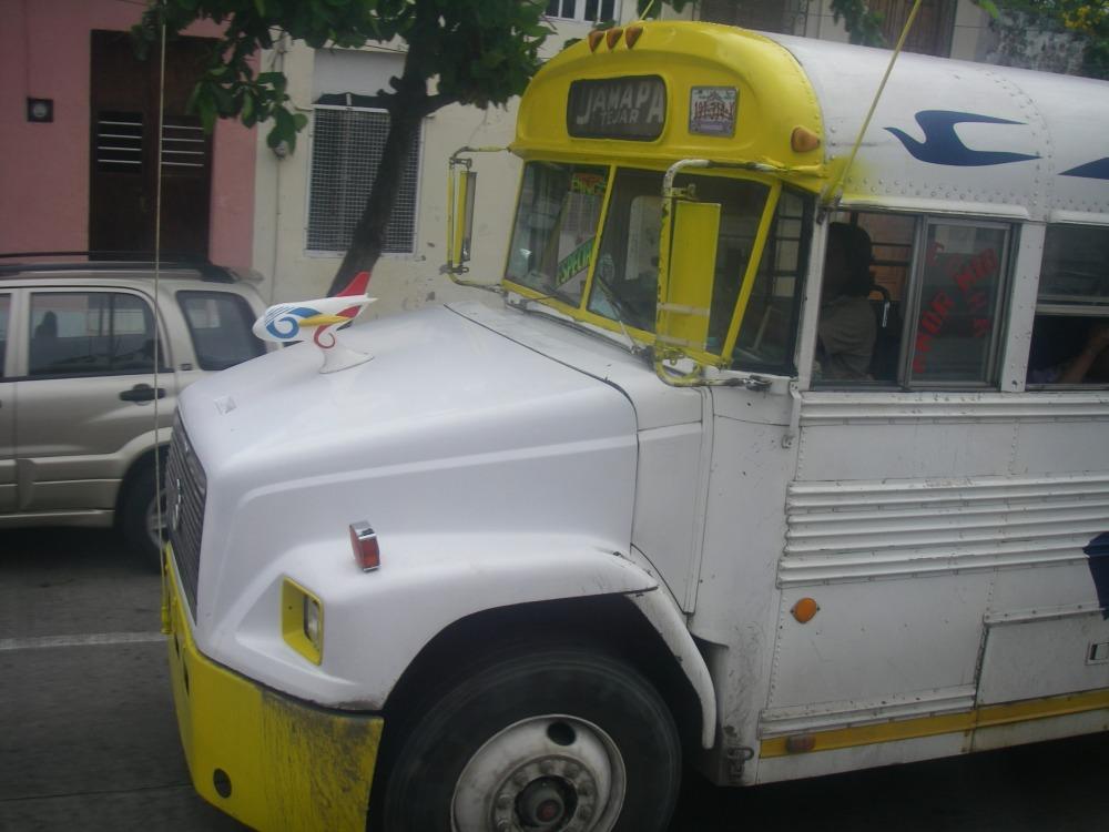 Schnauzen-Bus.