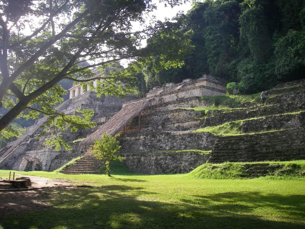 Hohe Pyramide, vom Dschungel umgeben.