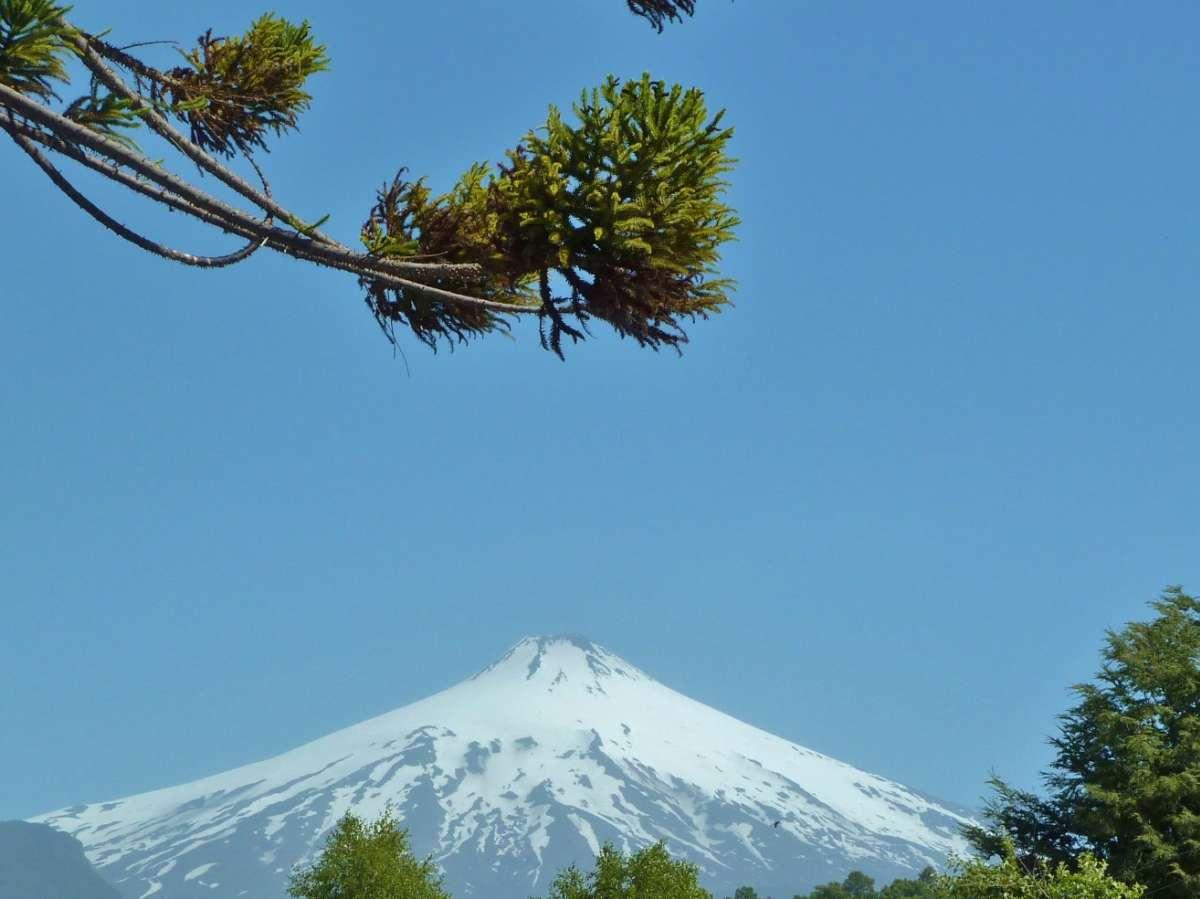 Vulkan und ins Bild ragender Ast einer Araukarie