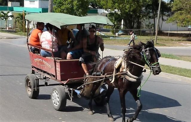 Cienfuegos Pferdedroschke