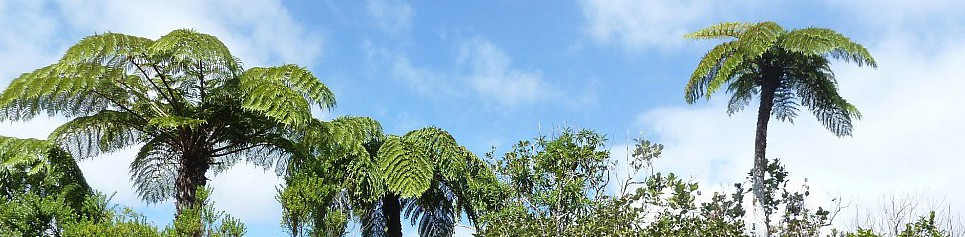 La Réunion – Europa im Indischen Ozean