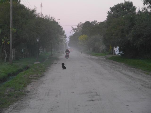 Straße (die nennen das hier so!) in Carlos Pellegrini
