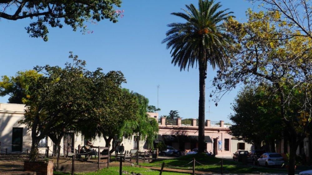 Grüner Platz mit Palmen, von niedrigen Häusern umrahmt.