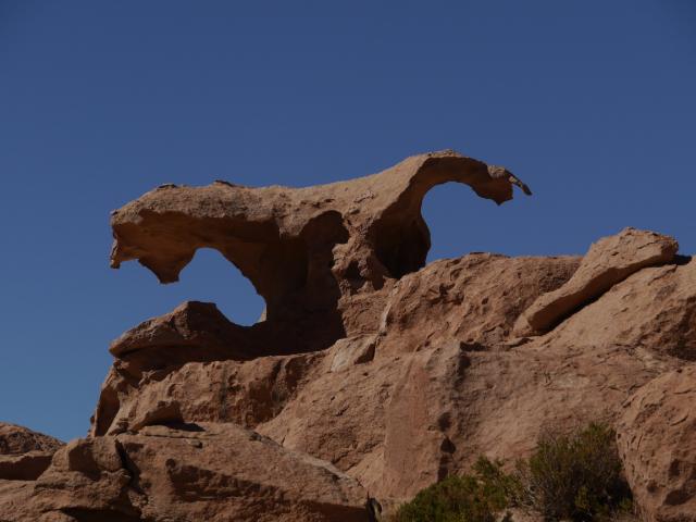 Condor aus Fels