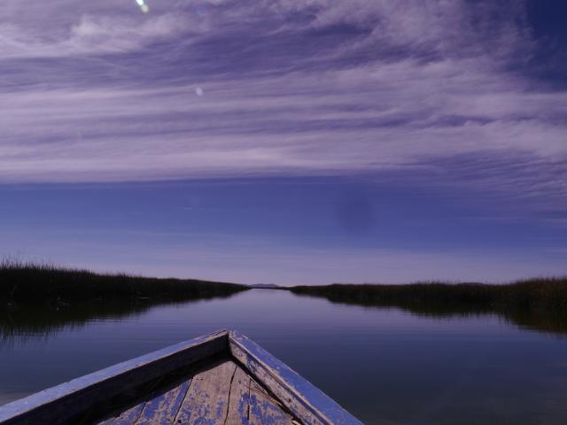See und Schilf und Himmel