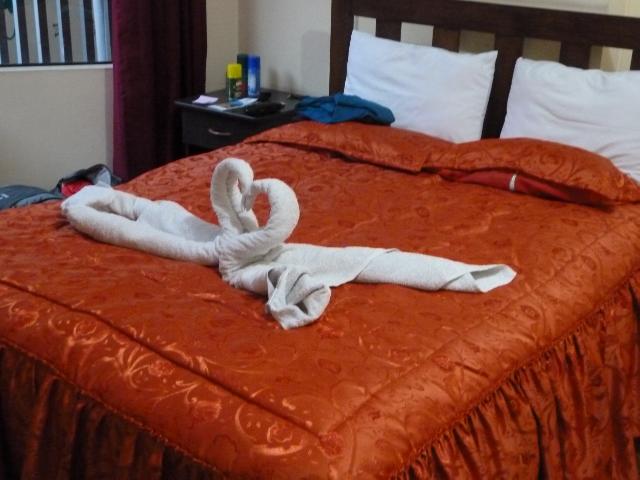 Es müssen nicht unbedingt Handtuch-Schwäne sein...