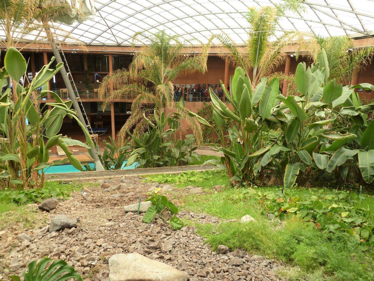 Schwimmbecken umgeben von tropischer Vegetation