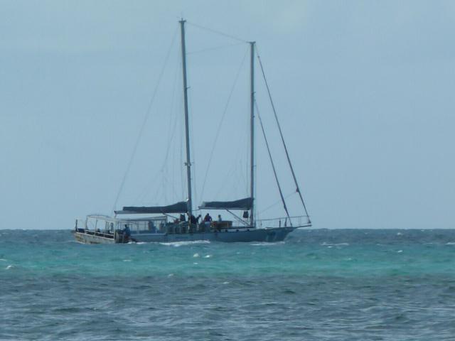 Segeln vor Cairns