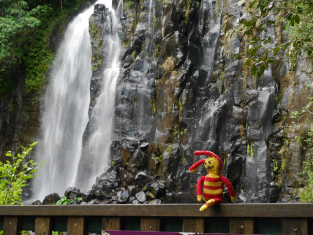 Reise-Ringel und die Mangalli Falls