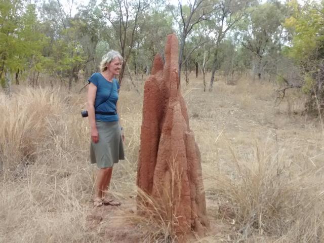 Auch ungestylte Termitenhügel sind beeindruckend