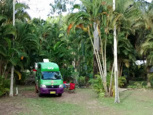 Viel Grün auf dem Campingplatz - nicht nur Kermit ?