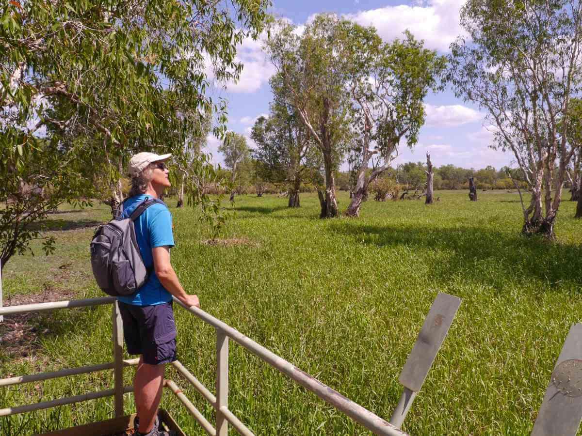 Marcus schaut über die Wiesen.