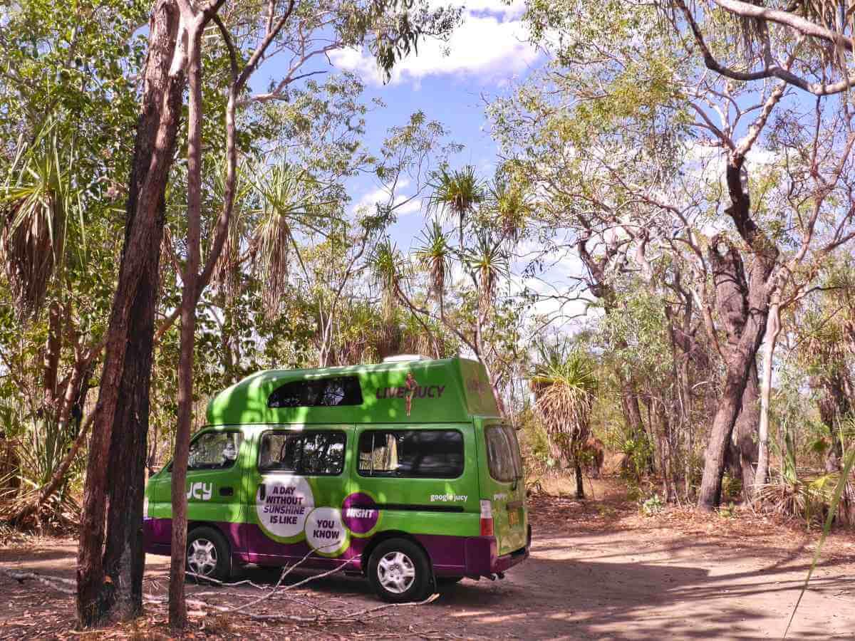 Grüner Camervan steht unter Bäumen.