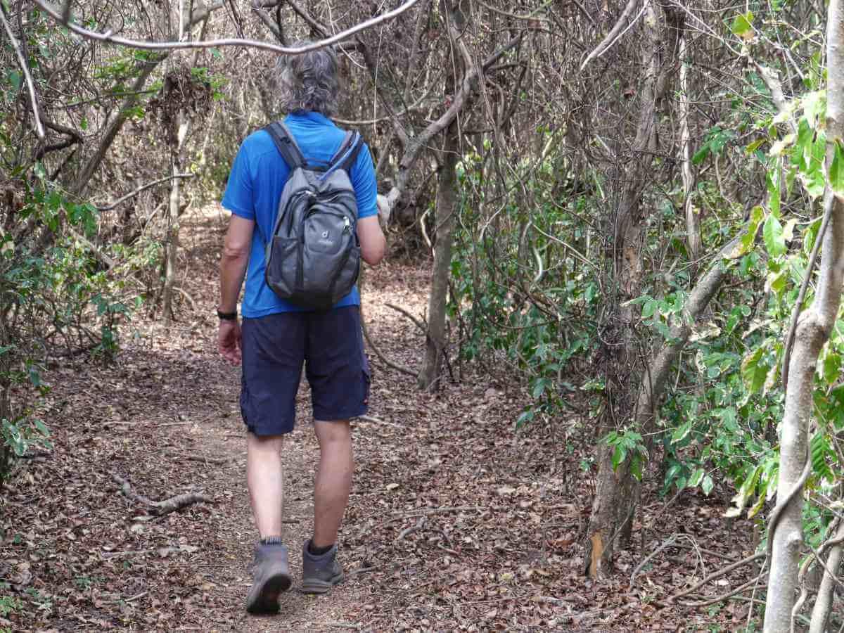 Marcus läuft durch trockenen Wald.