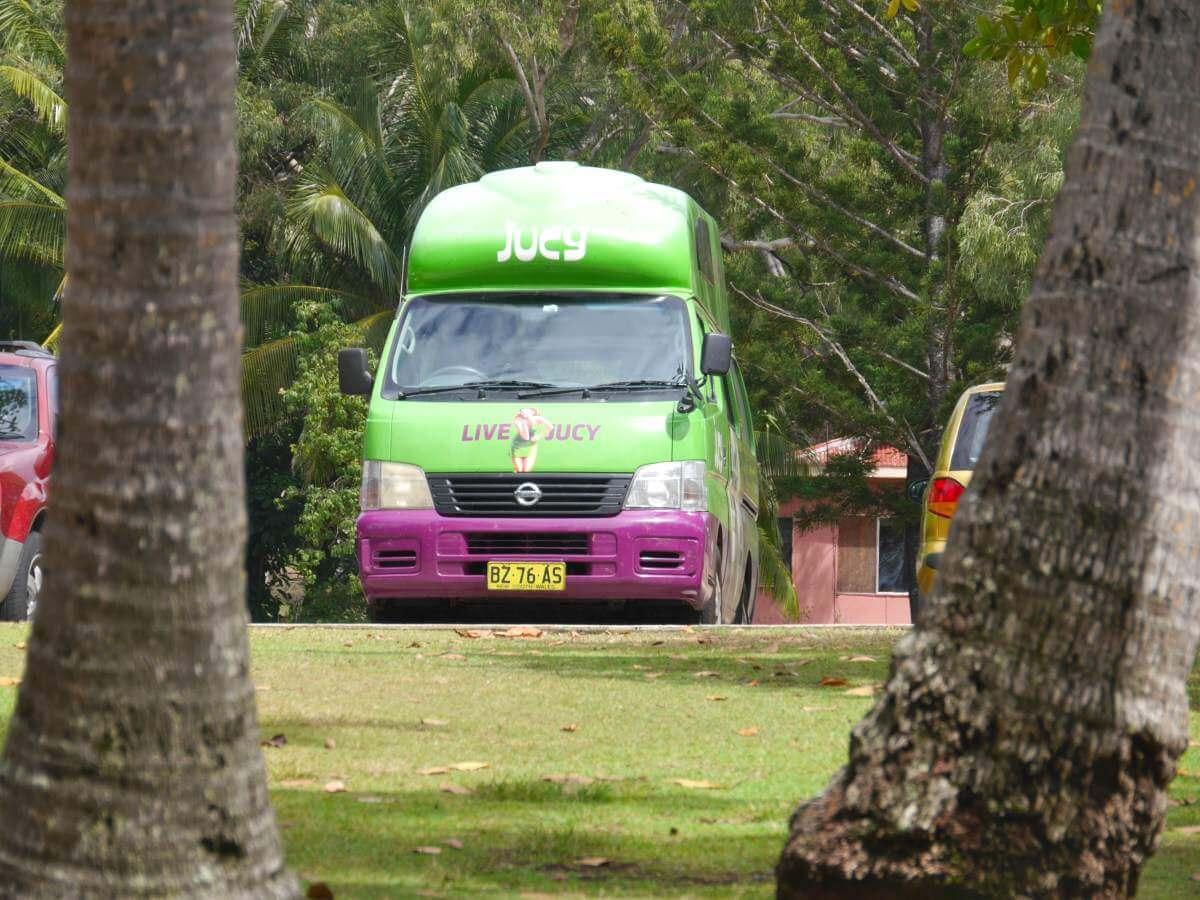 Grüner Campervan steht zwischen großen Bäumen.