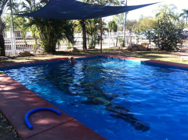 Lazy Lizard Pool