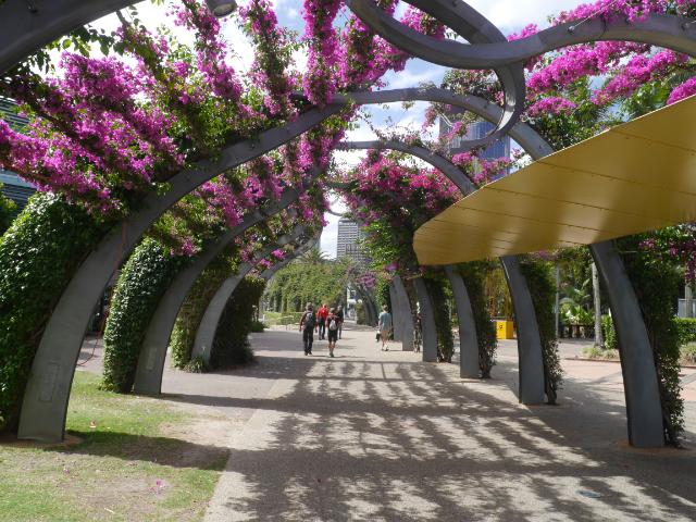 Park mit lilafarbenen Blütenarkaden.
