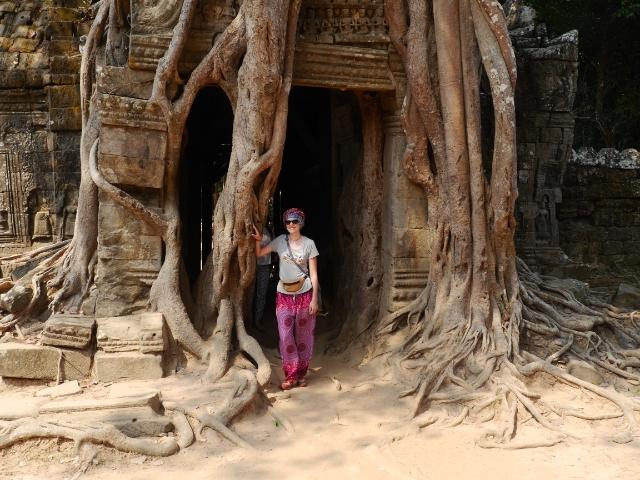 Angkor Wat Baumwurzel