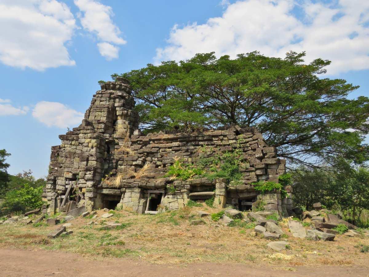 Tempelruine neben grünem Baum.