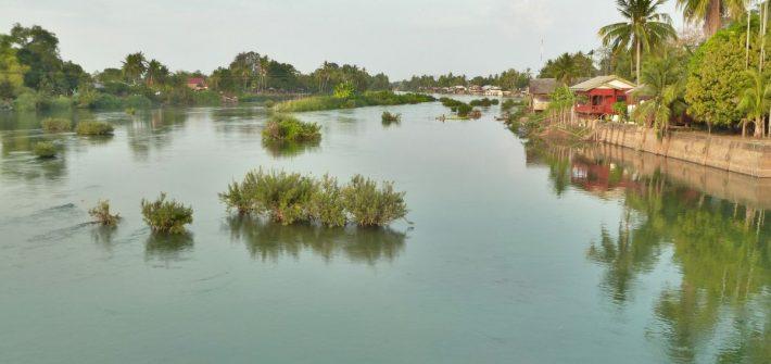 Blick über den Mekong mit Büschen und Inselchen im Wasser