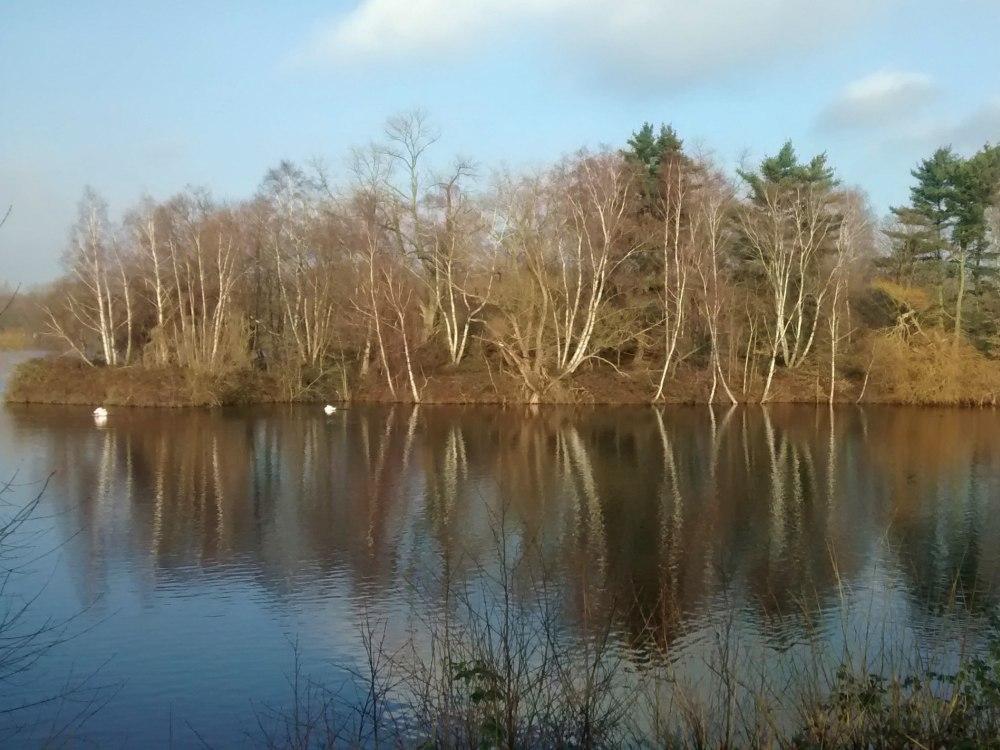 Insel spiegelt sich im See.