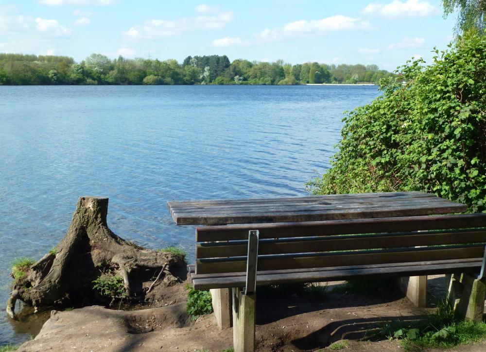 Eine Bank am Ufer des Unterbacher Sees.