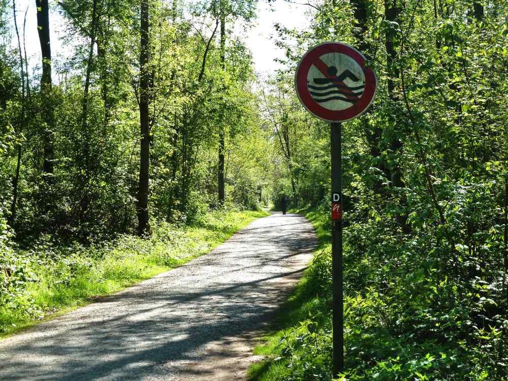 """Waldweg mit """"Schwimmen verboten""""-Schild."""