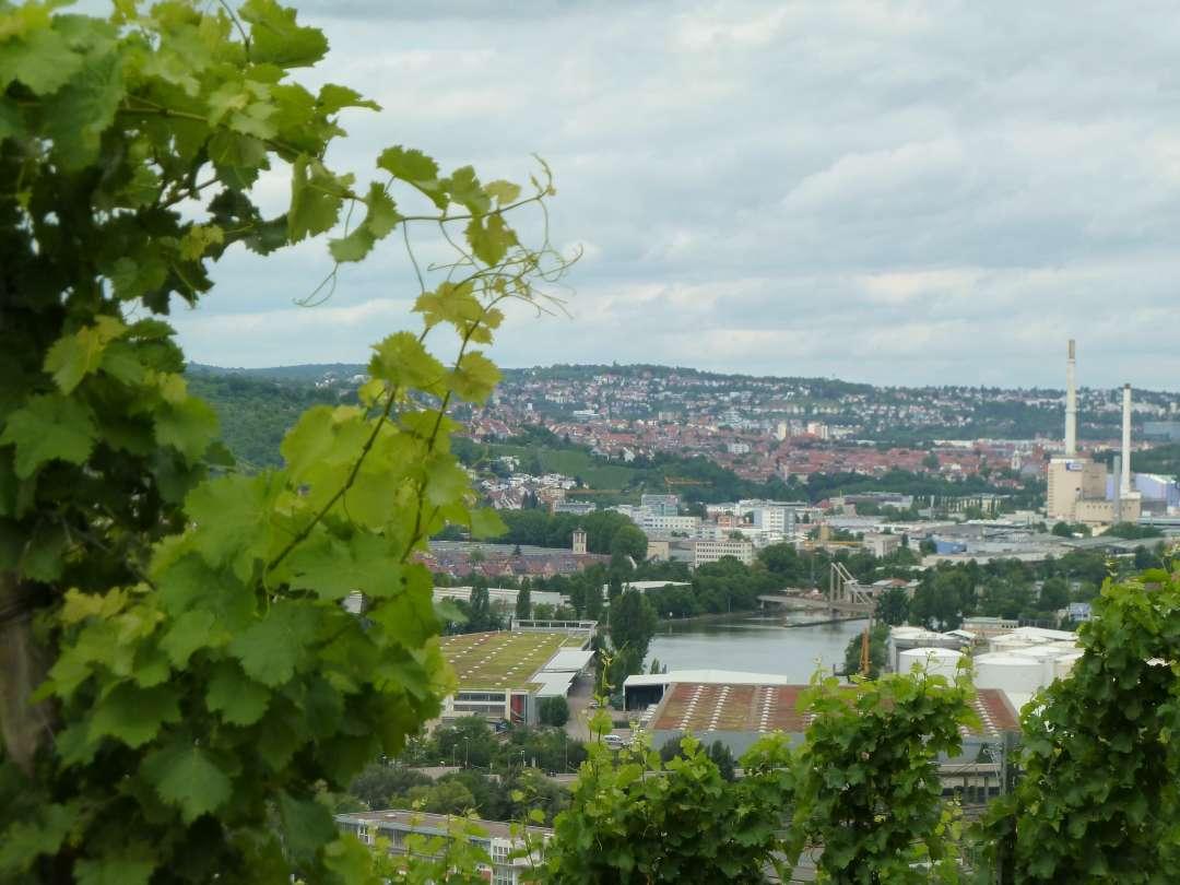 Blick vom Weinberg auf das Industriegebiet im Tal.