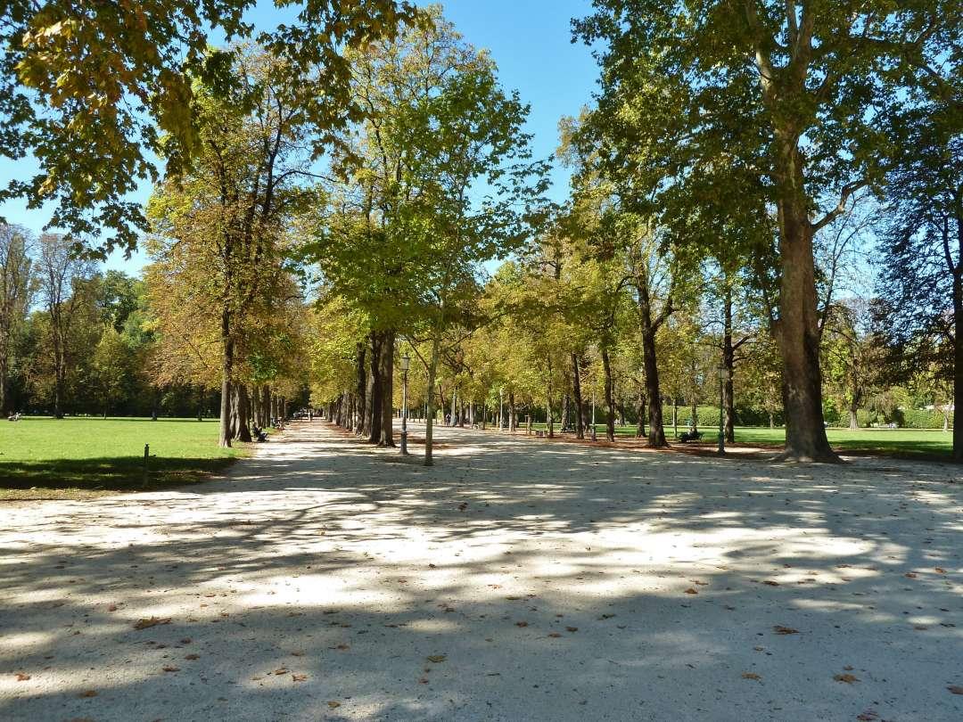 Alleeweg im Park