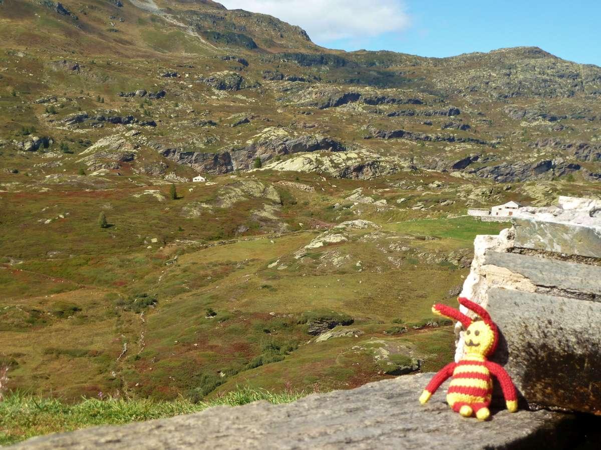 Reise-Ringel vor Alpenkulisse