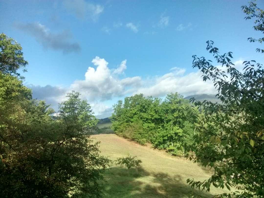 Landschaft mit Hügeln und Wäldern.