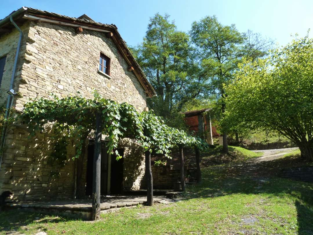 Steinhaus mit Weinreben über der Terrasse.