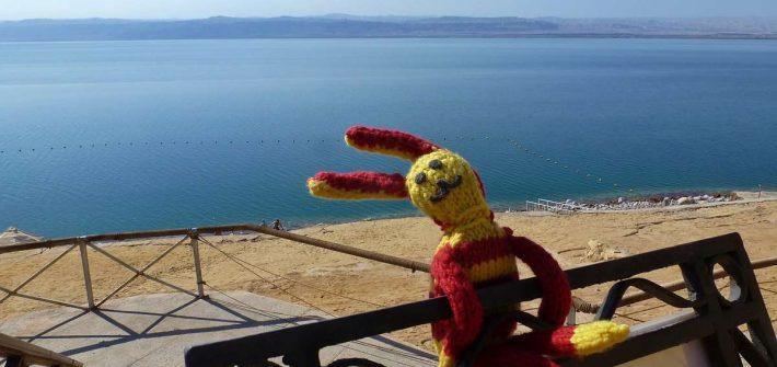 Blick auf das Tote Meer mit Reise-Ringel im Vordergrund