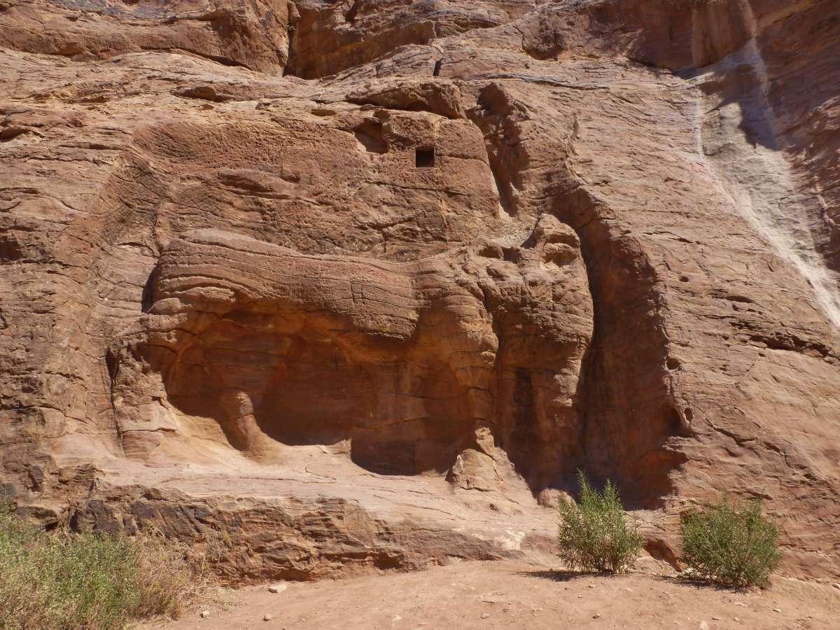 Relief eines großen Löwen in der Felswand von Petra