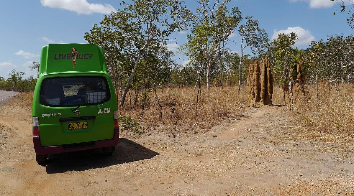 Roadtrip mit Kermit in 10 Bildern