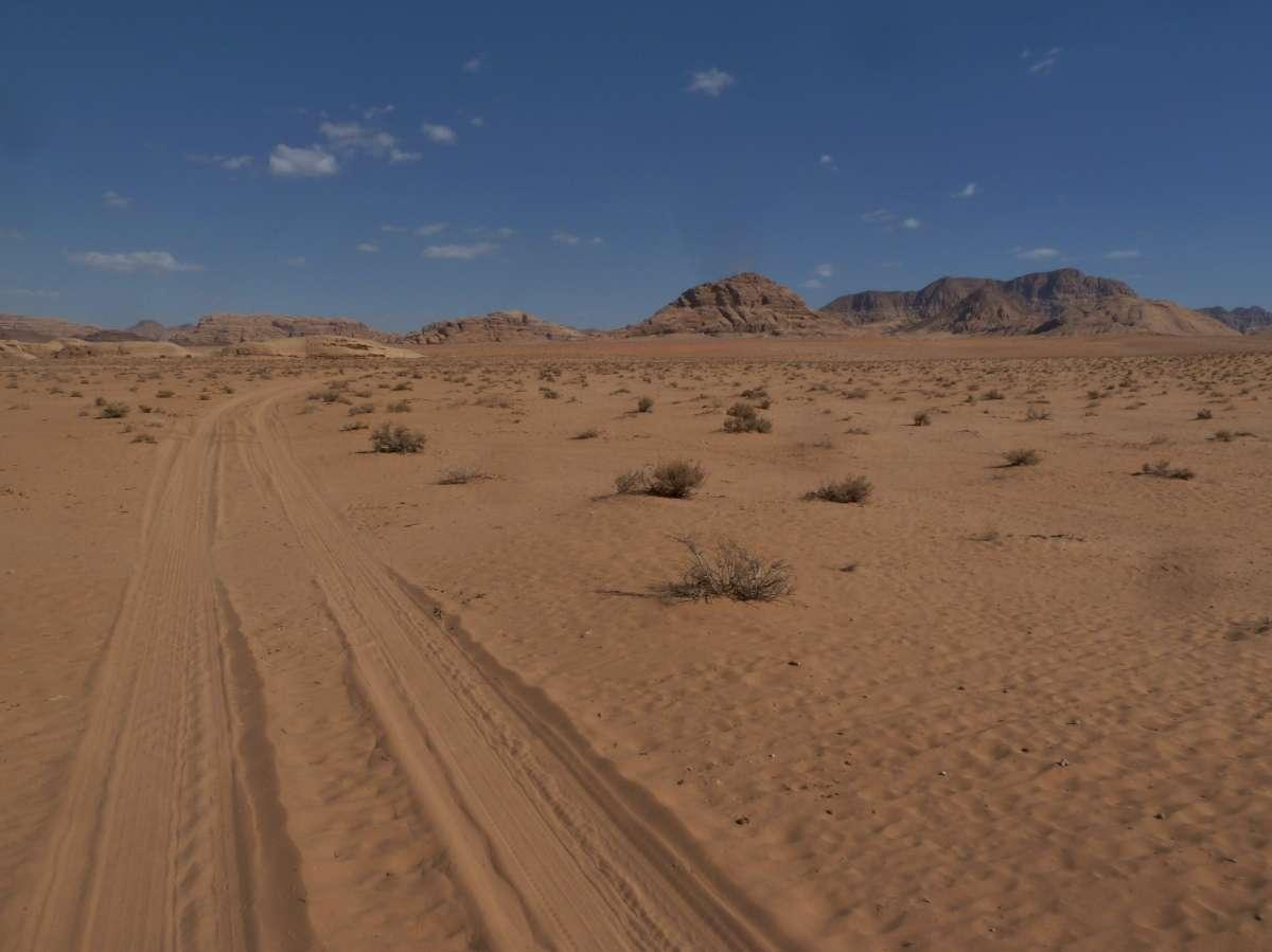 Sandige Wüste mit Fahrspuren
