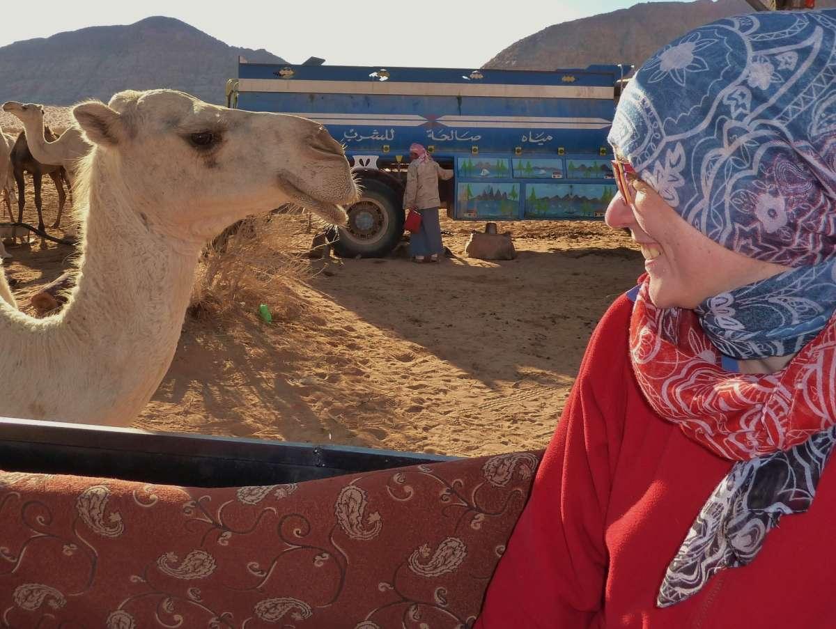 Kamel nähert sich Victoria