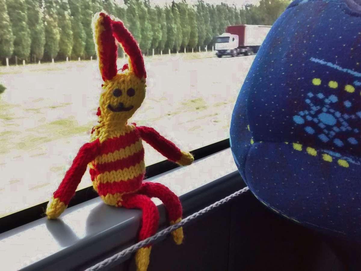 Reise-Ringel im Bus in Argentinien