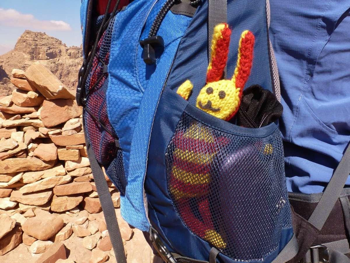 Reise-Ringel schaut aus der Seitentasche des Rucksacks