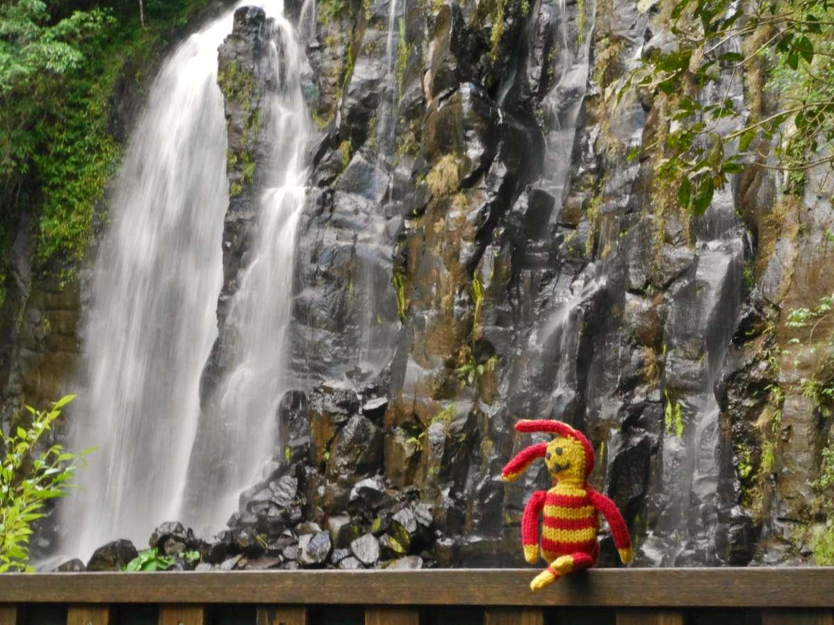 Reise-Ringel vor einem großen Wasserfall