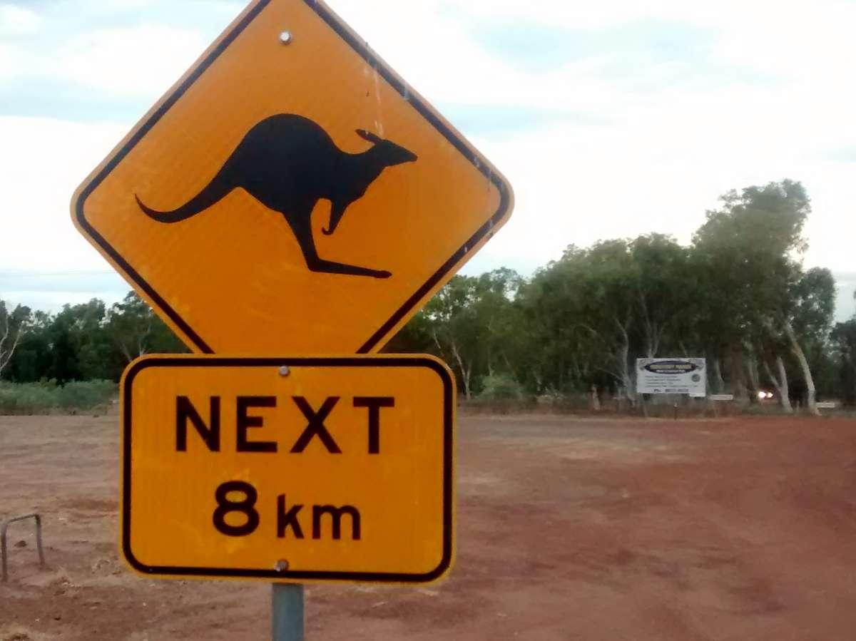 Warnschild mit Känguruh