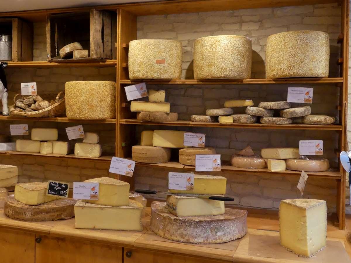 große und kleine Käselaibe in einem Laden in Straßburg