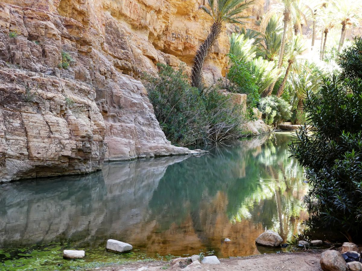 Felswand spiegelt sich im Wasser der Oase