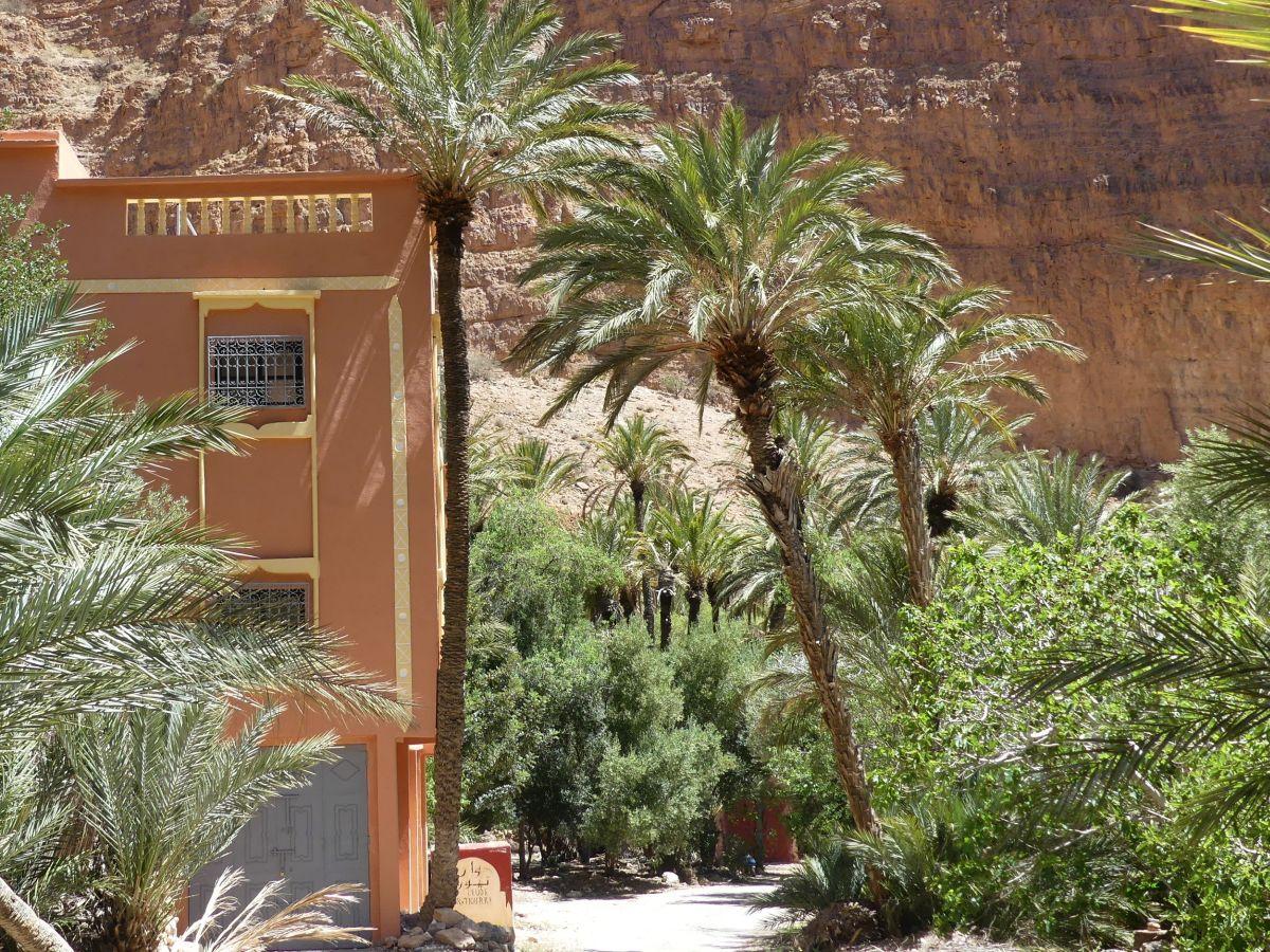 Haus und Palmen in der Schlucht