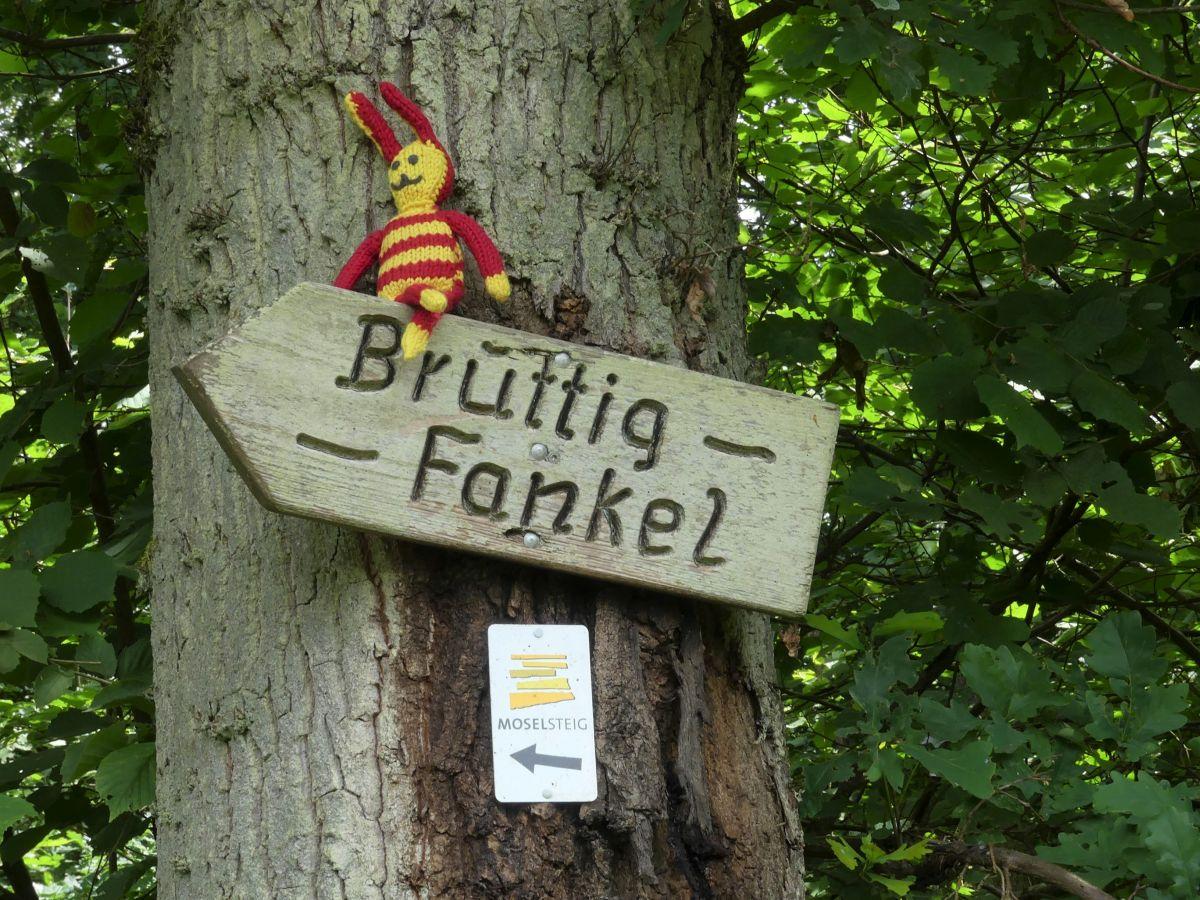 Reise-Ringel sitzt auf dem Wegweiser nach Bruttig-Fankel
