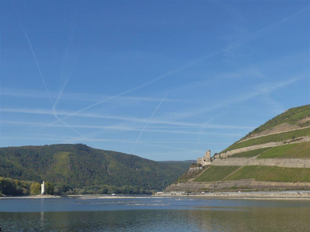 Rheinpanorama mit Mäuseturm und Burg Ehrenfels.