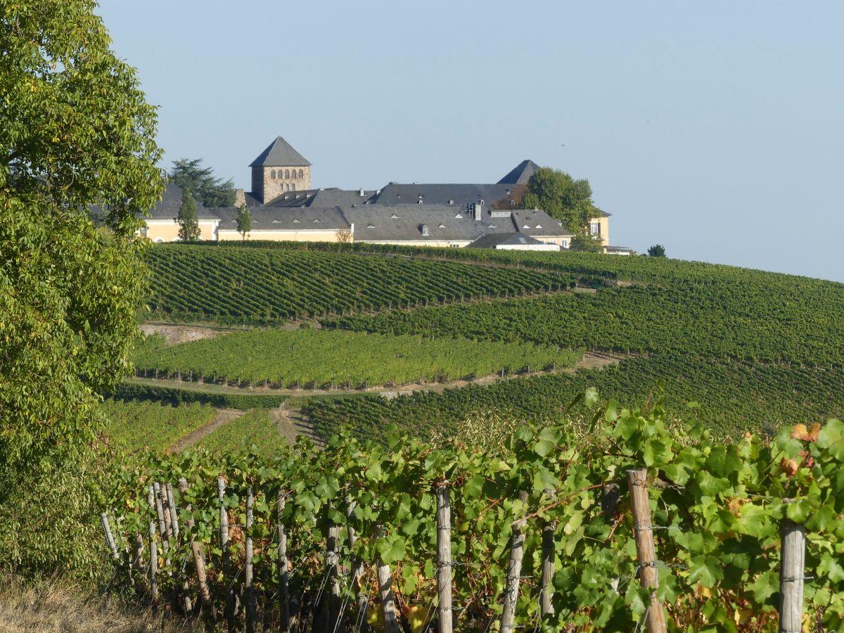 Schloss Johannisberg auf einem grünen Hügel
