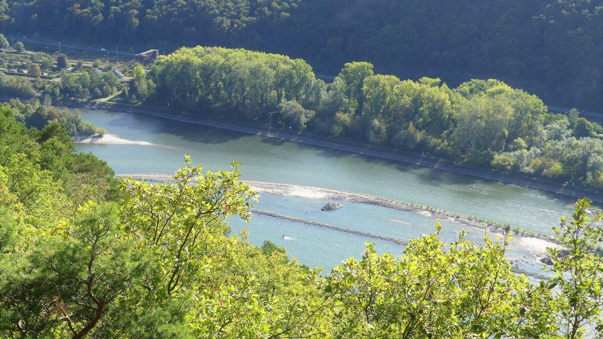 Rüdesheim: Wandern auf dem Rheinsteig