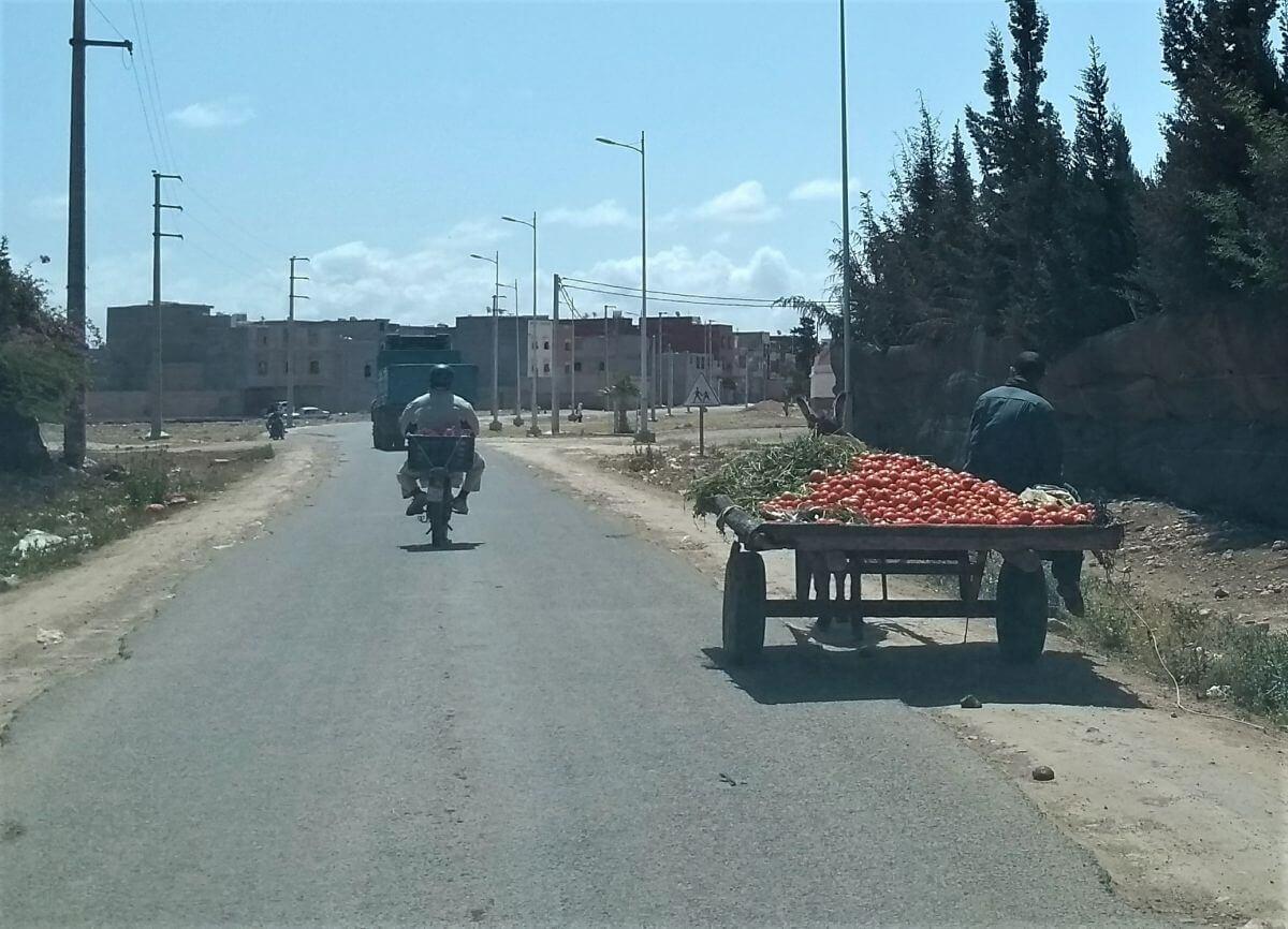 Eselskarren auf der Straße