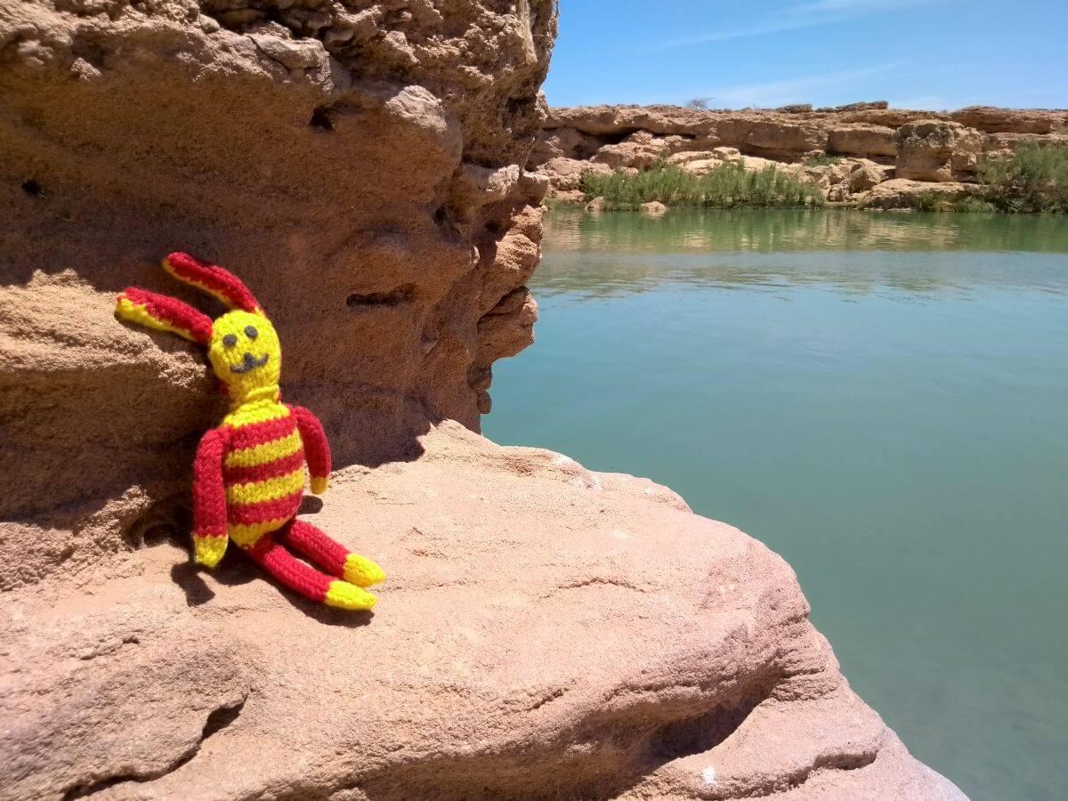 Reise-Ringel auf einem roten Felsen an der Oase